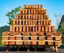 林業誌の表紙を飾ったオグラの「木材ピラミッド」